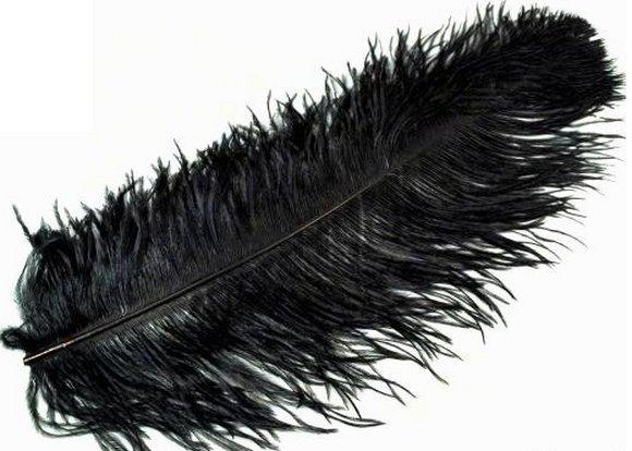 pštrosí peří, brka, pera 60cm-